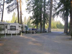 Tamarack RV Park Trees